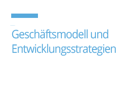 geschaftsmodell un entwicklungsstrategien