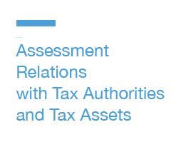 Assessment,-Relations-with-Tax-Authorities-and-Tax-Assets