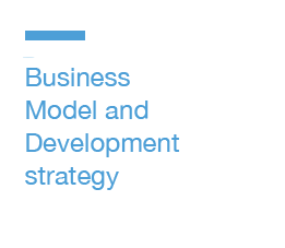 Business Model and Development Strategies