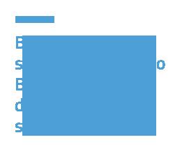 Business model e strategie di sviluppo