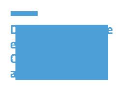 Diritto Commerciale e societario