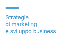 Strategie di marketing e sviluppo di business