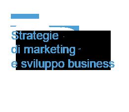 Strategie di marketing e sviluppo di business